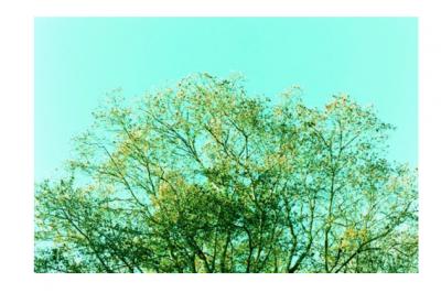 【店内展示】写真家・小野田陽一さんの作品を展示販売いたします